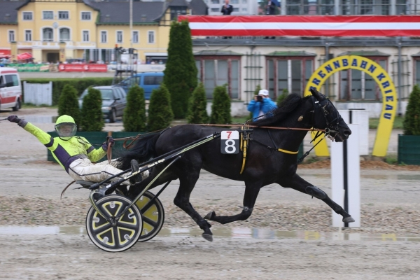 Sieg im Österreichischen Traber-Derby 2017 – Wotan Casei mit Gerhard Mayr
